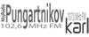 http://www.pungartnikovkarl.com